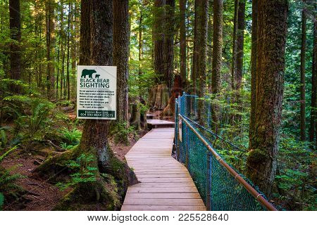 Vancouver, Canada - July 3, 2017 : Black Bear Sighting  Warning Sign In The Forest Of Lynn Canyon Pa