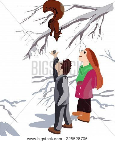A Sweet, Young Girl And A Handsome Boy Feed A Squirrel On A Tree. Cheerful Young Couple Walking Thro