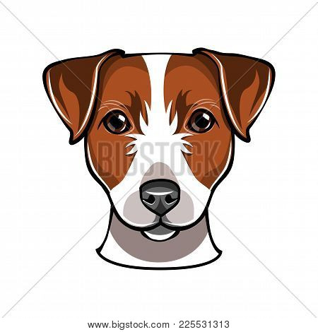 Jack Russell Dog. Vector Illustration Isolated On White Background.