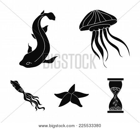 Jellyfish, Squid And Other Species.sea Animals Set Collection Icons In Black Style Vector Symbol Sto