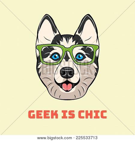 Siberian Husky In Smart Glasses. Dog Portrait. Geek Is Chik. Vector Illustration.