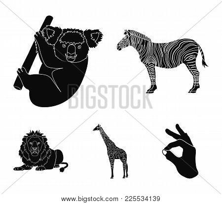 African Zebra, Animal Koala, Giraffe, Wild Predator, Lion. Wild Animals Set Collection Icons In Blac