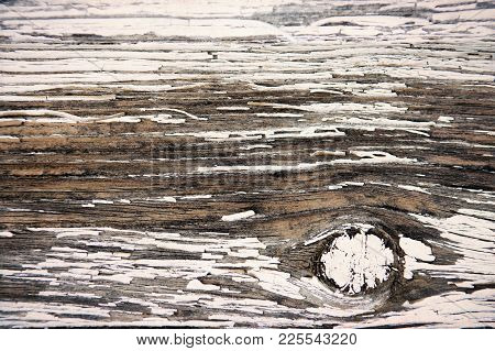 Peeling White Paint On Wood Grunge Background With Konts.