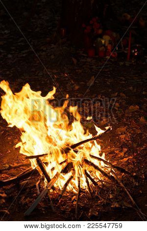 Camp Fire In The Night, Burning Wooden Logs