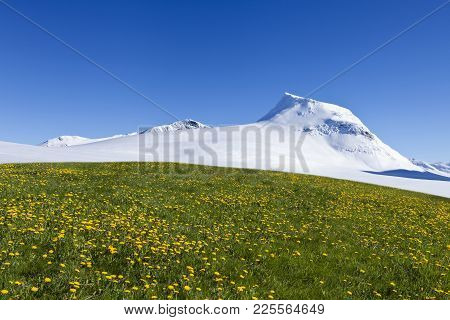 Shangri-la With Summer Meadows, Flowers And White Winter Mountains. Sunny Day On The Expanses.