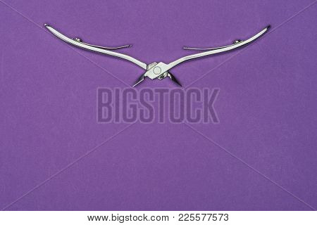 Top View Of Nail Nippers Isolated On Purple