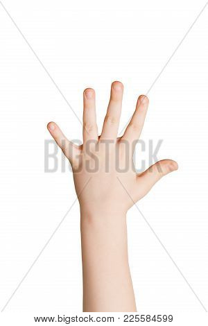 Kid Hand Shows Number Five Isolated. Child Palm Gesturing High Five Sign. Counting, Enumeration, Whi