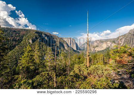 Yosemite National Park Valley summer landscape. California, USA.