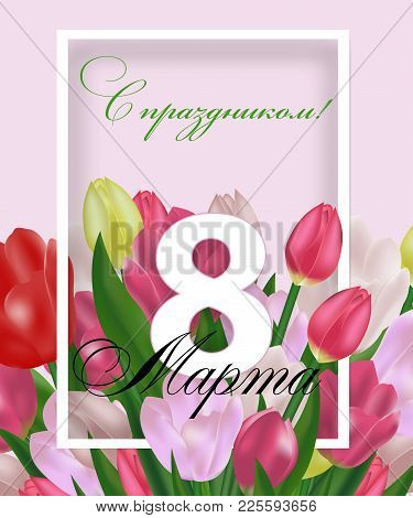 Greeting Card Template With Flowers March 8 International Women's Day. Background With Tulips And Th