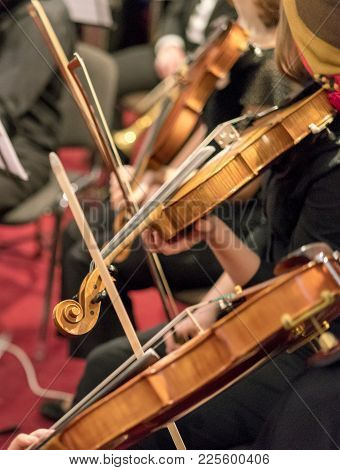 Three Wooden Violins Playing In The Orchestra Close-up. Classical Music