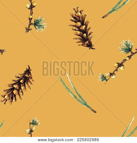 Watercolor Seamless Pattern With Pine Branches, Pine Cones, And Pine Needles Will Be Good For Decor