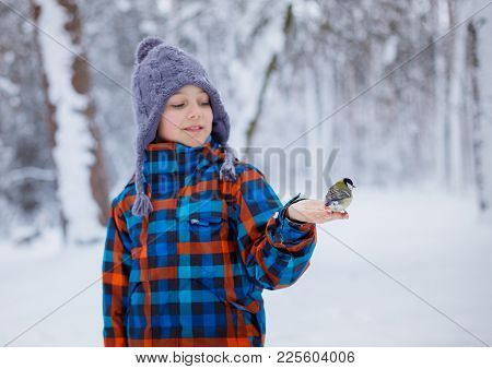 A Little Boy Feeds A Titmouse With His Hands In The Winter Forest