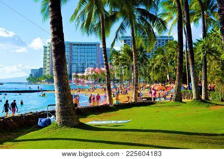 January 28, 2018 At Waikiki Beach In Honolulu, Hi:  Palm Trees And Manicured Green Lawn At A Park Be