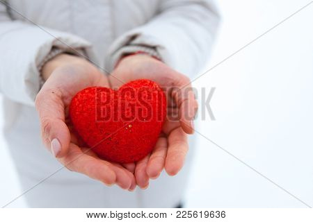 The Red Textured Heart Lies On The Palms. Valentine's Day.