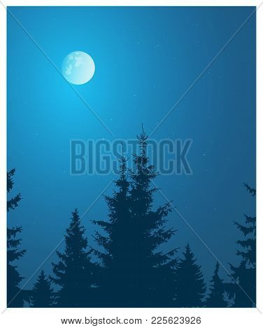 Image Landscape. Silhouette Of Coniferous Trees On The Background Of Night Sky And Full Moon.