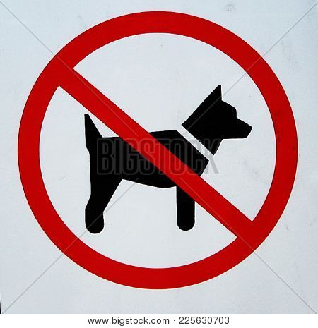 Dogs Prohibited And Not Allowed In A Particular Area