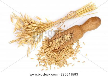 Oat Spike With Grains In Wooden Scoop Isolated On White Background. Top View. Flat Lay.