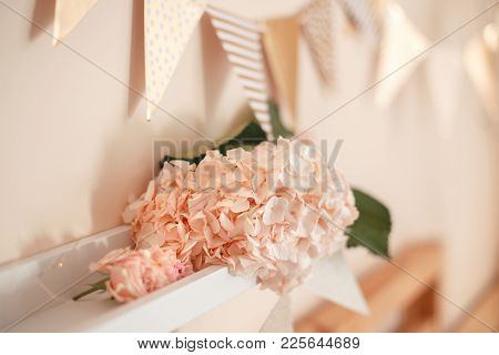 Decoration Of  Room For Birthday Celebration. Macro Closeup Of Soft Tender Light Pink Hydrangea And