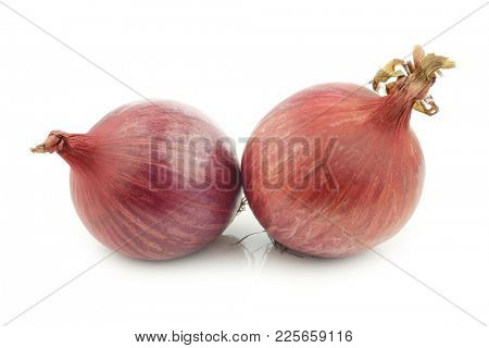 Pink onions on a white background