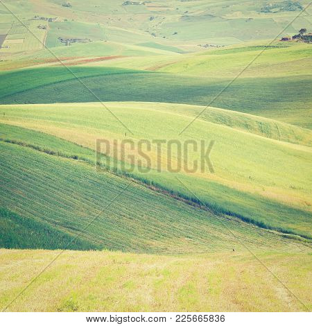 Stubble Fields On The Hills Of Sicily, Instagram Effect