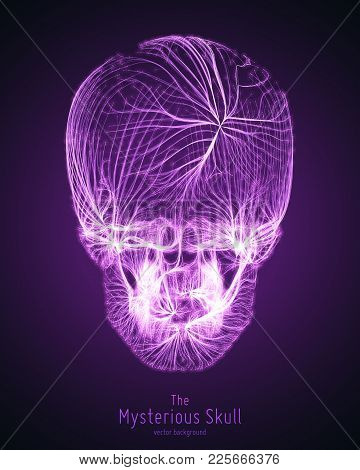 Vector Skull Constructed With Violet Lines. Mysterious Source Of Life Background. Internet Security