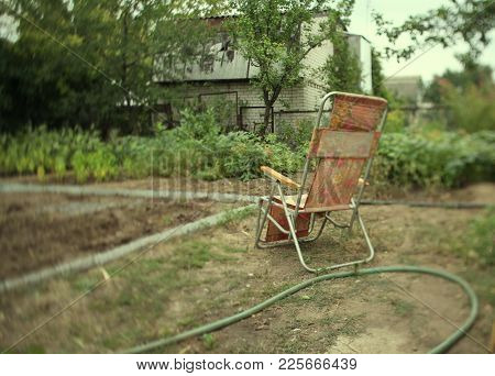 Clamshell Chair In The Garden Tilt Shift