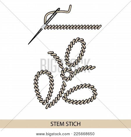 Stitches Backstich Type Vector. Collection Of Thread Hand Embroidery And Sewing Stitches. Vector Ill