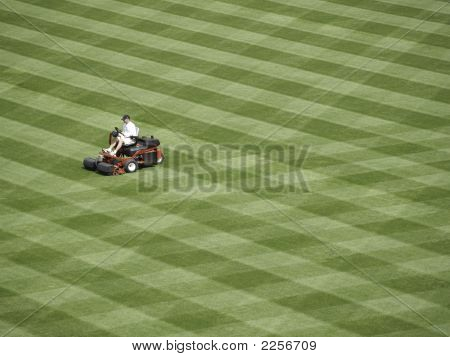 A Lot To Mow.