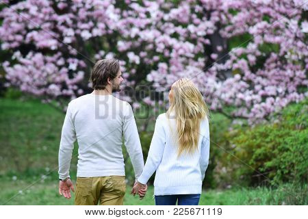 Sensual Couple Hold Hands In Spring Park, Back View. Woman And Man Date In Blossoming Garden. Spring
