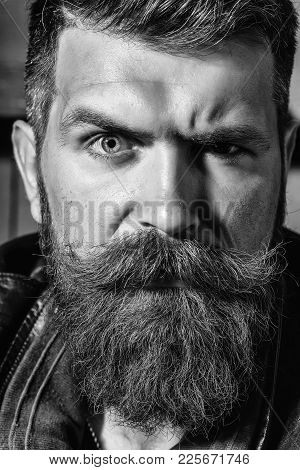 Frown Bearded Man With Beard Moustache And Gray Hair Stylish Hipster Male Outdoors On Wooden Backgro