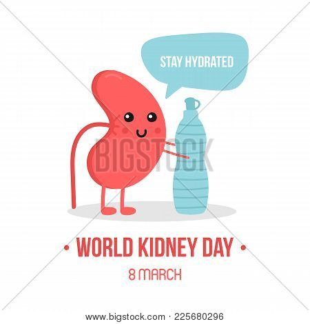 Vector Illustration For World Kidney Day With Kidney Character, Giving Advice To Stay Hydrated, Drin