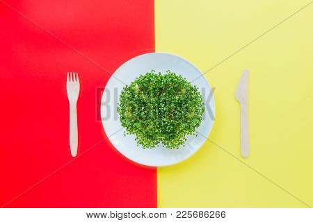 Top View Plate With Fresh Organic Sprout Micro Greens Served With Wooden Cutlery On The Bright Yello