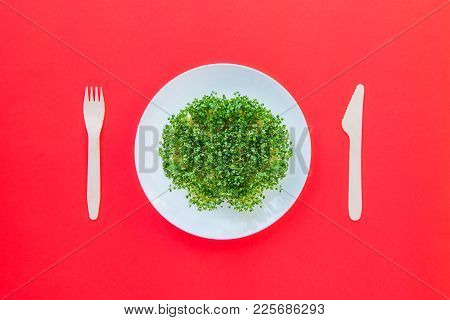 Top View Plate With Fresh Organic Sprout Micro Greens Served With Wooden Cutlery On The Bright Red B