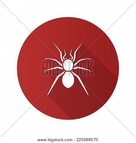Spider Flat Design Long Shadow Glyph Icons Set. Arachnida. Vector Silhouette Illustration