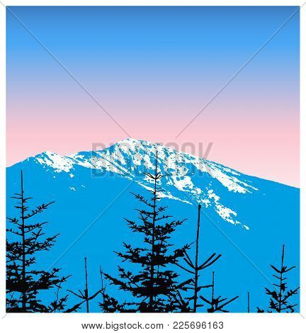 Panorama Of Mountains. Silhouette Of Mountains With Snow And Coniferous Trees On The Background Of C
