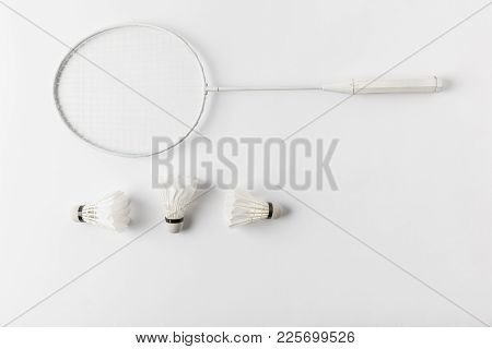 Top View Of Badminton Racket With Suttercocks In Row On White Surface
