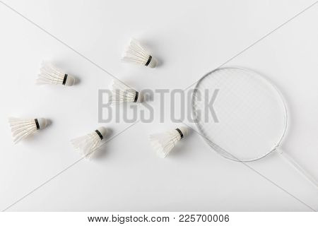 Top View Of Badminton Shuttlecocks And Racket On White Surface