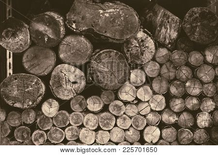 Old Wood Log Firewood Forestry Logging Tree Vintage Color Tone