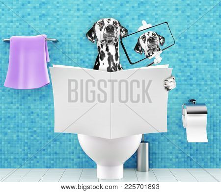 Dog Sitting On A Toilet Seat With Digestion Problems Or Constipation Reading Gossip Magazine Or News