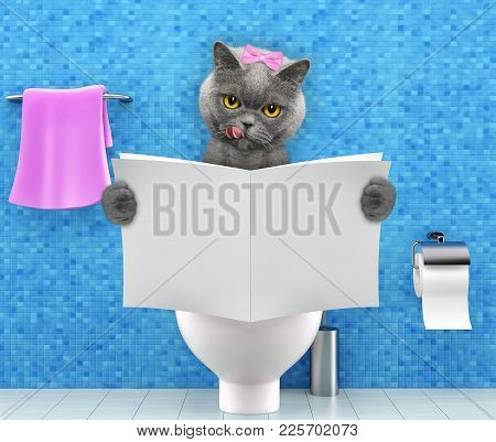 Cat Sitting On A Toilet Seat With Digestion Problems Or Constipation Reading Gossip Magazine Or News