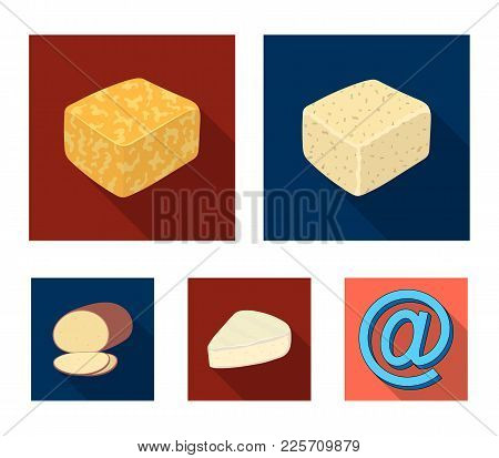 Brynza, Smoked, Colby Jack, Pepper Jack.different Types Of Cheese Set Collection Icons In Flat Style