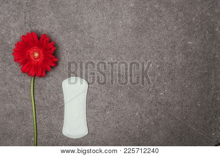 Top View Of Arranged Menstrual Pad And Red Flower On Grey Surface