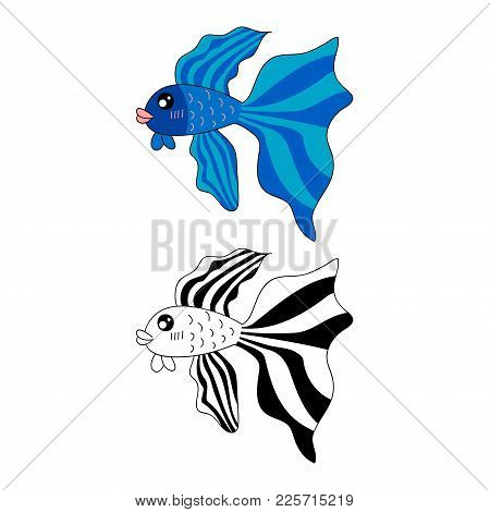 Siamese Fighting Fish. Vector Illustration. Isolated On White Background