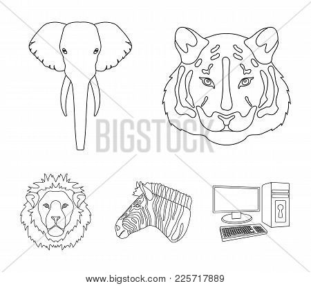 Tiger, Lion, Elephant, Zebra, Realistic Animals Set Collection Icons In Outline Style Vector Symbol