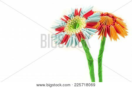 Module Origami Paper Flowers Craft Isolated On White Background