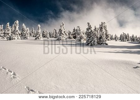 Praded Hill In Jeseniky Mountains With Frozen Forest, Snow, Communication Tower And Blue Sky With Cl