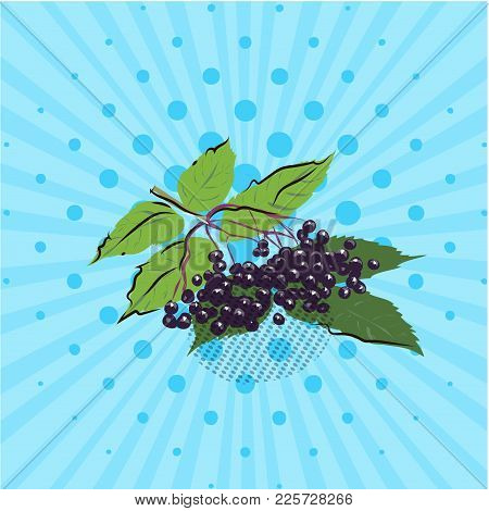 Branch With Elderberries On A Blue Background, Lines, Dots. Vector Illustration. Hand Drawn In Style