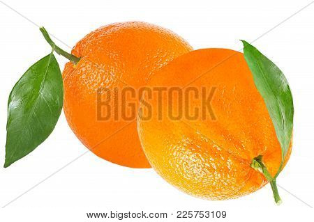 Isolated Oranges. Two Oranges With Leaf Isolated On White Background With Clipping Path As Packaging