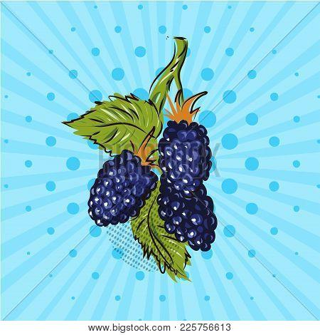 Color Blackberry Illustration On Blue Background. Vector Illusrtation. Hand Drawn On Style Pop Art.