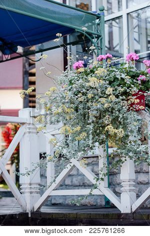 Landscape Desing Elements At A Flower Garden